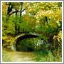 : Мост на территории