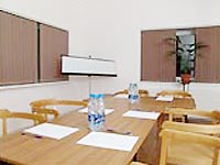 Конференц зал на 40 человек в Усадьбе