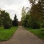 Пансионат Лесной Городок: На территории