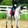 Загородный клуб Полан: Верховая езда