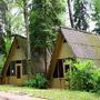 Пансионат Солнечная Поляна : Бунгало на территории