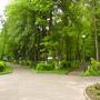 Санаторий Тишково: На территории санатория