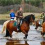 База отдыха Медведица: Конные прогулки