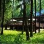 Пансионат Воробьи: Активный отдых