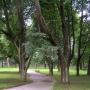 Центр реабилитации Вольгинский: Парк на территории