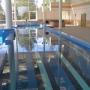 Центр реабилитации Вольгинский: Бассейн верхний