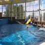 Центр реабилитации Вольгинский: Бассейн