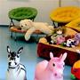 Эко-отель Романов Лес: Отдых с детьми