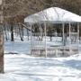 Дом отдыха Компонент: Территория зимой