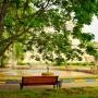 Санаторий-курорт Лесное озеро: На территории