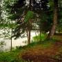 Санаторий-курорт Лесное озеро: Истринское водохранилище