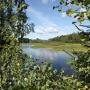 База отдыха Усадьба  Кузнецово: Природный пруд