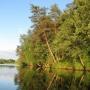 База отдыха Аист: Природа на территории базы