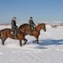 Отель Дафна: Конные прогулки