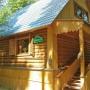 Дом отдыха Покровское: Территория дома отдыха