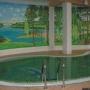 Санаторий Виктория: Крытый бассейн