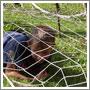 Детский лагерь Вымпел: Спортивный поход
